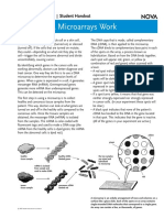 How DNA microarray works.pdf