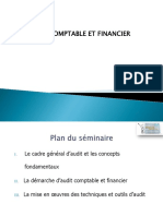 Support Introduction Audit Comptable Et Financier