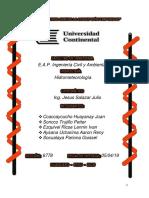 Hidrometeorología - TRABAJO.docx