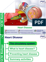 heart disease notes