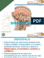 DIENCEFALO.gslides.pdf
