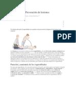 Isquiotibiales Prevención de Lesiones