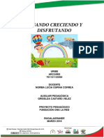PROYECTO PEDAGOGICO  ARCOIRIS.docx
