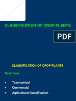 3.Classification of Crop Plants