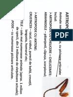 artropode1.pdf
