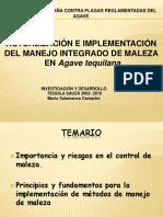 Manejo_Integrado_de_Malezas_en_Agave_Tequilana_Mario_Salamanca.pdf