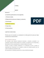 TRABAJO DE LIBERTAD CONDICIONAHHL.docx