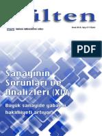 Bülten-Büyük sanayide yabancı sermaye.pdf