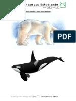 3Planificación Anual Por Unidad Ciencias Naturales