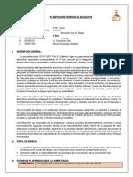 PLANIFICACIÓN CURRICULAR ANUAL 2019 DIANA -LISTO.docx
