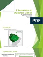 Amazonia e Mudanças Globais
