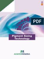 Brochure Pigment Sizing Technology1 (1)