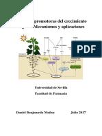 Bacterias para crecimiento vegetal