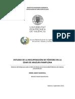 Estudio de la recuperación de fosforo en la Edar de Arazuri-Pamplona (Tesis).pdf