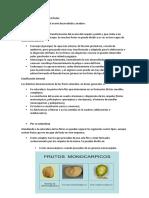Clasificación General de Los Frutos