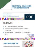 105.tce.pdf