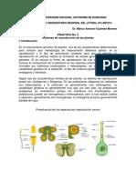 Práctica 2 Sistemas de Reproducción en Las Plantas