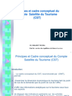 Principes Du Cadre Conceptuel Du CST