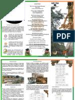 licenciatura-en-biologia-triptico.pdf