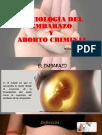 Semiología Del Embarazo y Del Aborto Criminal
