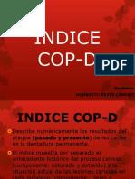 11. ÍNDICE COP-D  ceo