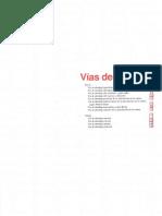 01 VIAS DE ABORDAJE.pdf