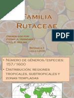 Fam Rutaceae