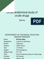 Lesson 6 - Agents Used in Cardiac Arrhythmias (1)