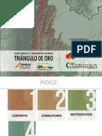 Triangulo de oro ppt 10.12.15.pdf