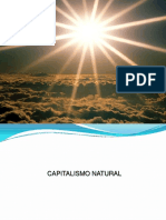 10-_capitalismo_natural_-_odair_salles (1).pdf