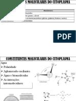 Constituintes Moleculares de Citoplasma