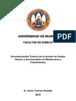 Tesis_Depositada.pdf