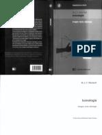 Mitchell, W. J. T. - Iconologia. Imagen, Texto e Ideologia