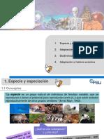 Clase 12 Adaptación e historia evolutiva.ppt