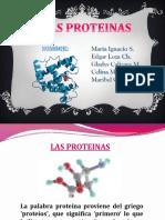 proteinas 11111