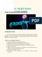 Generalidades Sistema Nervioso (2)