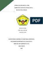 Laporan Katim Vidya - DP