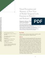 Visual Perception and Memory