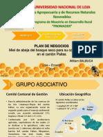 106766857-Plan-de-Negocios-Miel-de-Abeja.pdf