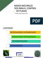 EXPO CLASE CONTROL JOHANA.pdf