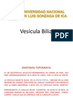 VESICULA BILIAR 2014.pdf