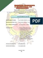 PRACTICAS Nº 02-LEVAN GPS.docx