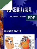 Deficiencia Visual (Ana Luisa 2005)