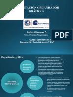 Modelo de Organizador - Finanzas Responsables - Carlos Villanueva