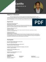 Curriculum Vitae Angela Castillo