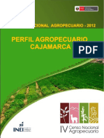 CAJAMARCA - PERFIL AGROPECUARIO IV CENSO - 2012.pdf