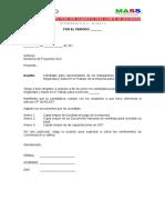 carta presente para ser candidato  del SST