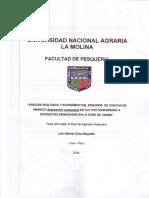 Can2004b.pdf