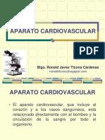 APARATO CARDIOVASCULAR.pdf