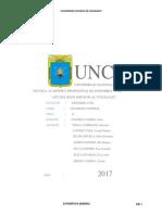 informe de estadistica TERMINADO.docx